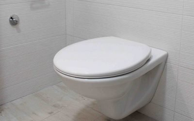 Toilet Safety for Disabilities